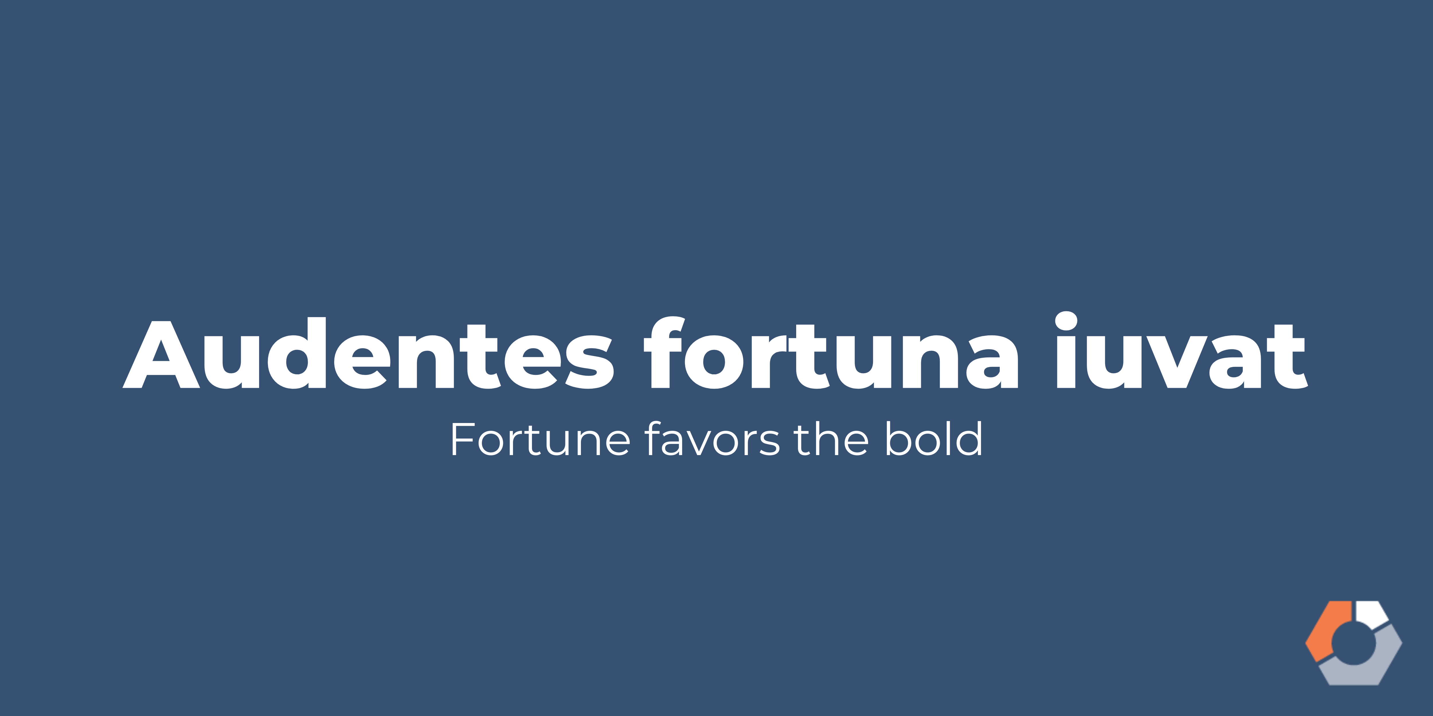 """Audentes fortuna iuvat"" translates to ""fortune favors the bold."""